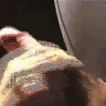 エロいフェラシーンをピックアップvol7 エロすぎる映像 | フェラシーン  89画像